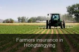 Farmers insurance in Hongtangying