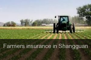 Farmers insurance in Shangguan