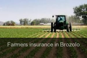 Farmers insurance in Brozolo
