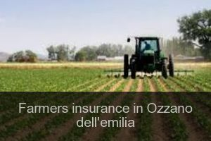 Farmers insurance in Ozzano dell'emilia